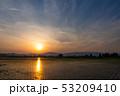 水田に反射する夕日 田植えの後 5月 秋田県 田園風景 53209410