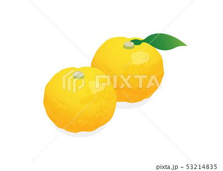 柚子 53214835