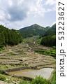 水田 稲 米の写真 53223627