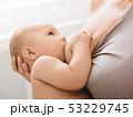 胸 母乳育児 おかあさんの写真 53229745