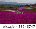 茶臼山高原 53246747