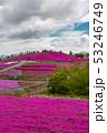 茶臼山高原 53246749