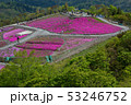 茶臼山高原 53246752
