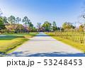 京都 春の上賀茂神社 参道と一の鳥居 53248453