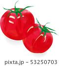 野菜 トマト 夏野菜のイラスト 53250703