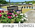 薔薇園 53284521