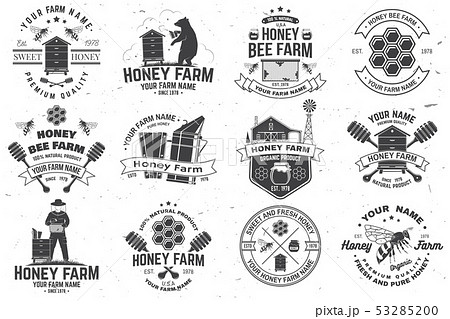 Set of Honey bee farm badge. Vector. Concept for print, stamp or tee. Vintage typography design with 53285200