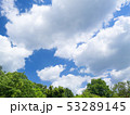 新緑 雲 空の写真 53289145