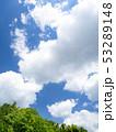 新緑 雲 空の写真 53289148