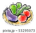 筆描き 食品 夏野菜 53295073