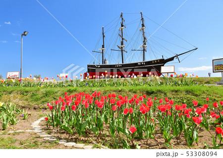 快晴の北海道木古内町でサラキ岬公園の春の風景を撮影 53308094