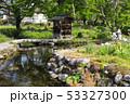 日本 植物 水の写真 53327300