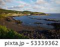 三宅島 海岸 海の写真 53339362