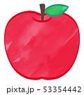 林檎 ベクター 果物のイラスト 53354442