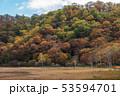 栃木県日光市 奥日光 小田代原 (10月) 53594701