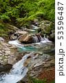 新緑の西沢渓谷  53596487