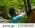 新緑の西沢渓谷 母胎淵(甌穴) 53596560