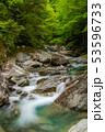 新緑の西沢渓谷  53596733