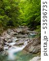新緑の西沢渓谷  53596735