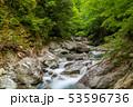 新緑の西沢渓谷  53596736