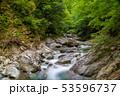 新緑の西沢渓谷  53596737