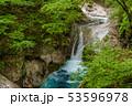 新緑の西沢渓谷 貞泉の滝 53596978