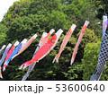 埼玉県川口市グリーンセンターのこいのぼり 53600640