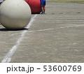運動会の大玉 53600769