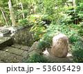 埼玉県 武蔵一宮氷川神社 蛇の池 53605429