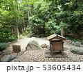 埼玉県 武蔵一宮氷川神社 蛇の池 53605434
