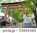 埼玉県 武蔵一宮氷川神社の参道 53605483