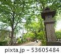 埼玉県 武蔵一宮氷川神社の参道 53605484
