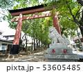 埼玉県 武蔵一宮氷川神社の参道 53605485