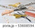 バードカービング。野鳥の木彫刻、野鳥彫刻。彩色済はウグイスです。※素人の製作途中の作品です。 53608594