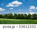 野原 運動場 畑の写真 53612332