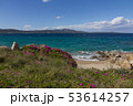 Costa Smeralda seascape with beautiful turquoise water and purpl 53614257