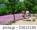 芝桜を楽しむ親子 53615180