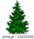 Christmas tree isolated on white background. Sample of poster, party holiday invitation, festive 53620388