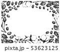 コットン 木綿 綿のイラスト 53623125