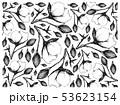 コットン 木綿 綿のイラスト 53623154