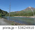 上高地 梓川の河原 5月下旬 53624910