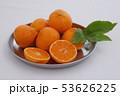 マンダリンオレンジ 53626225