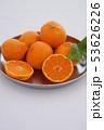 マンダリンオレンジ 53626226