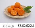 マンダリンオレンジ 53626228