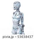 アンドロイド ロボット 人型ロボットのイラスト 53638437