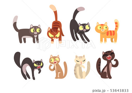 Flat vector set of different cats. Funny cartoon characters. Home pets. Cute domestic animals 53643833