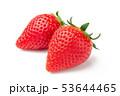 苺 フルーツ 果物の写真 53644465