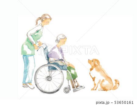 車椅子のおばあさん、介護と犬 53650161