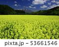 岩手山と菜の花 53661546