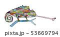 カメレオン 53669794